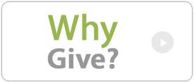 why give
